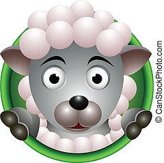 sheep, carino, testa, cartone animato