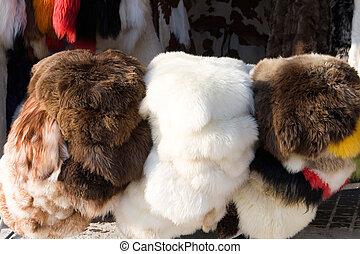 sheep, cayó, goat, y