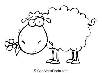 sheep, con, flor, en, boca