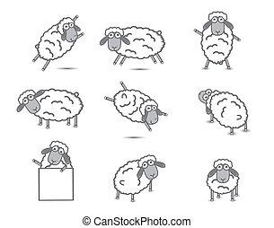 sheep, conjunto, vector