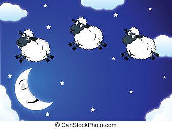 sheep, contar
