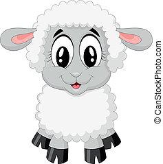 sheep, cute, caricatura
