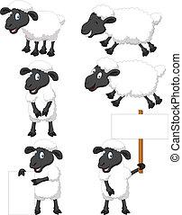 sheep, cute, sæt, cartoon, samling