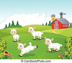 sheep, cute, sæt, samling, cartoon