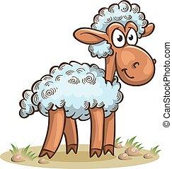 sheep, engraçado, caricatura