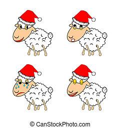 sheep, engraçado, diferente, emoções, expressar, natal