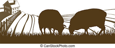 Farm rolling hills landscape with farmhouse and sheep feeding on grass in silhouette