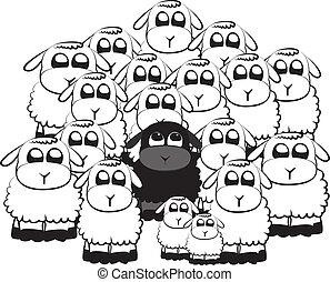 sheep, fekete