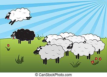 sheep, felett, ugrás, fekete