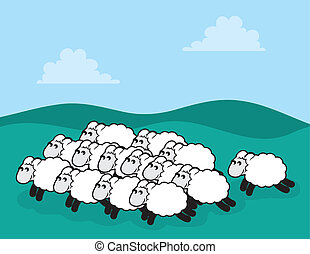 Flock of sheep in a grassy field