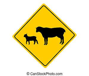Sheep flock warning sign