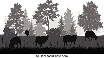 Sheep grazing in meadow near forest, silhouette. Rural scene. Vector illustration.