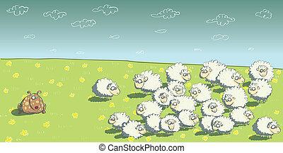 sheep, gregge, cane pastore