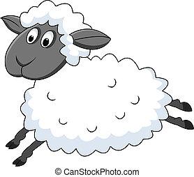 sheep, hoppning