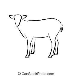 Logo of Grazing sheep full length isolated on white.