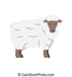 sheep, icon., wektor, jagnię, ilustracja