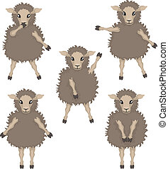 sheep in various poses