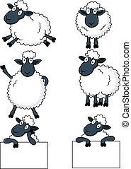 sheep, karikatúra