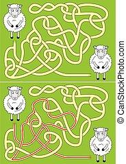 sheep, laberinto