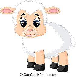 sheep, lindo, caricatura