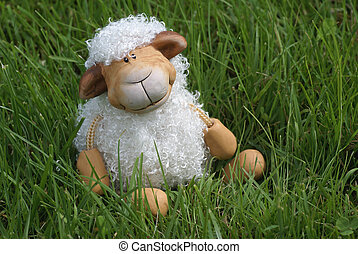 sheep., lindo