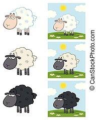 sheep, litera, -, zbiór, 3, rysunek, maskotka