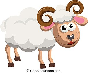 sheep, macho, aislado, carnero