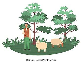 sheep, pastor, natureza, rebanho, agricultura, homem