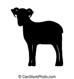 sheep, silueta