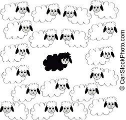 sheep., troupeau
