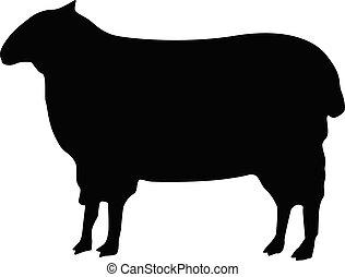 sheep vector icon