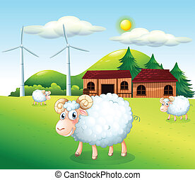 Sheeps at the farm with windmills