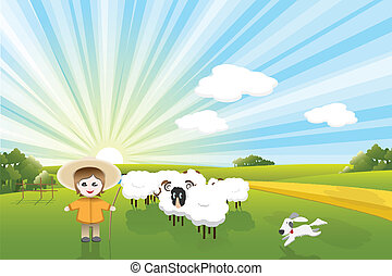 sheeps, chien