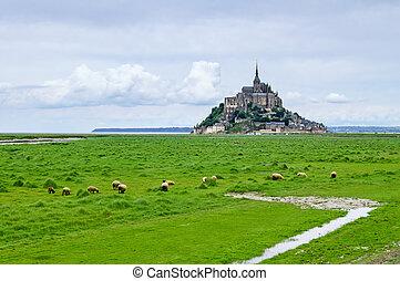 Sheeps grazing near Mont Saint Michel landmark. Normandy,...