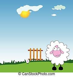 sheeps on the farm cartoon vector illustration