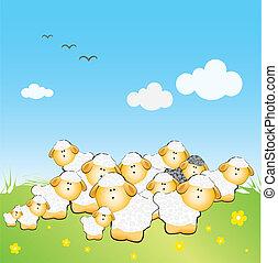 sheeps, une, noir, troupeau