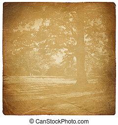 sheet., antigas, dado forma, rasgado, isolado, papel, ...