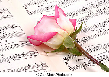 Sheet Music and a Pink Rose