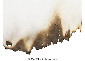 Burnt Paper - Sheet of Burnt Paper with Copy Space Isolated ...