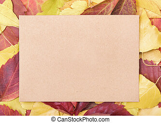 Sheet of paper on a autumn leaves.