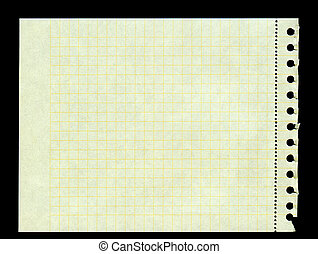 sheet of yellow squared paper torn out of a ring binder, left edge is frayed