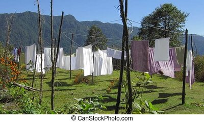 Sheets drying by a sunny and windy