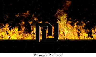 Shekel Sign Burning Hot Word in Fire