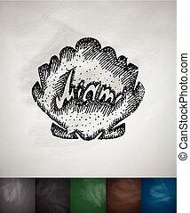 shell Miami icon. Hand drawn vector illustration