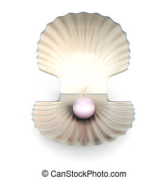 Shell pearl isolated on white background