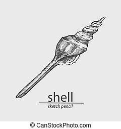 shell., vector, bosquejo, style.