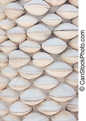 shell wall background
