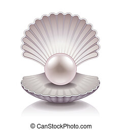 Shell with pearl vector illustration - Shell with pearl...