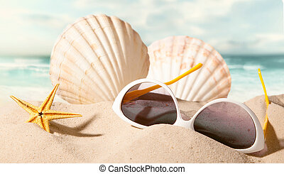 shell with sunglasses on beach