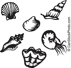 Six highly stylized shell and mollusk vector illustrations